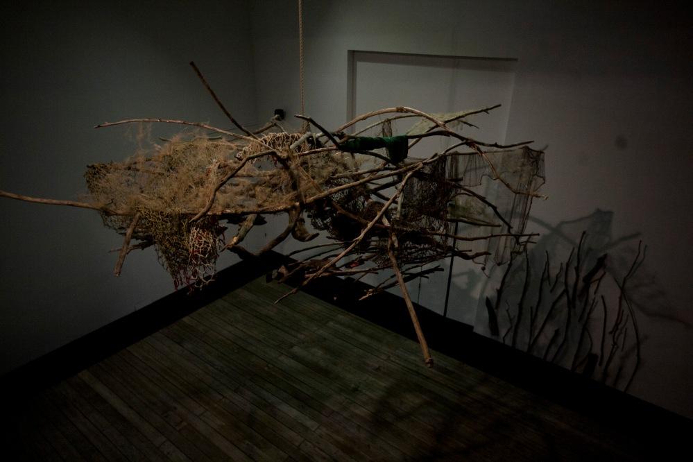 documentation doves and an aged hammock-gaia beats 3-i TBAcontemporary (41)